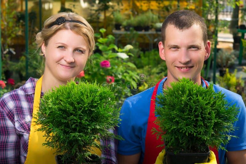 Κηπουροί που κρατούν τις πράσινες εγκαταστάσεις στα δοχεία στοκ φωτογραφία με δικαίωμα ελεύθερης χρήσης