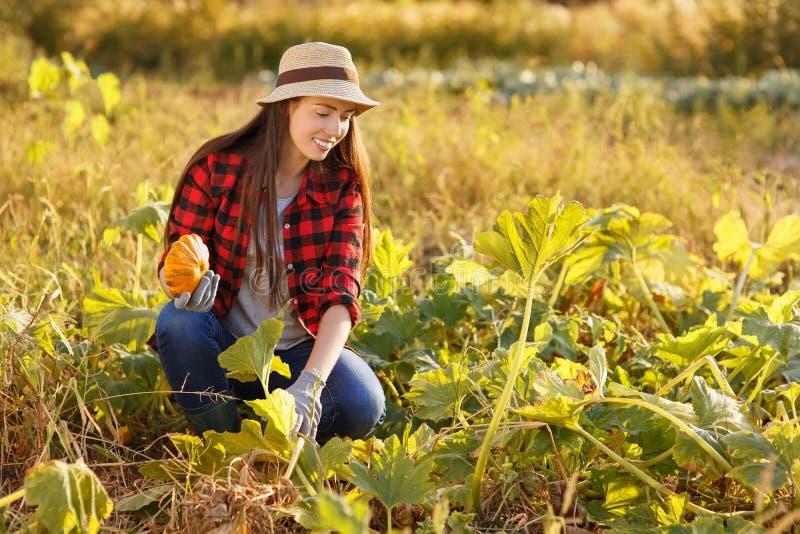 Κηπουρός γυναικών με την κολοκύνθη στοκ φωτογραφίες με δικαίωμα ελεύθερης χρήσης