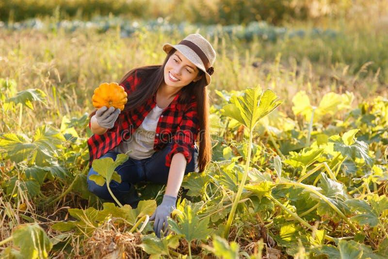 Κηπουρός γυναικών με την κολοκύνθη στοκ εικόνες