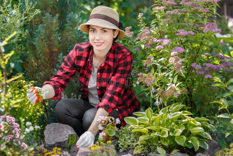 Κηπουρός γυναικών που βγάζει τα ζιζάνια στοκ εικόνες
