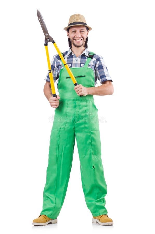 Κηπουρός που απομονώνεται αρσενικός στο λευκό στοκ εικόνα