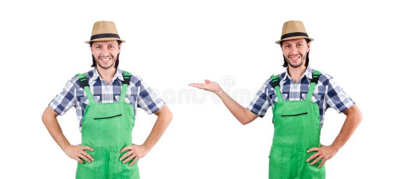 Κηπουρός που απομονώνεται αρσενικός στο λευκό στοκ εικόνες