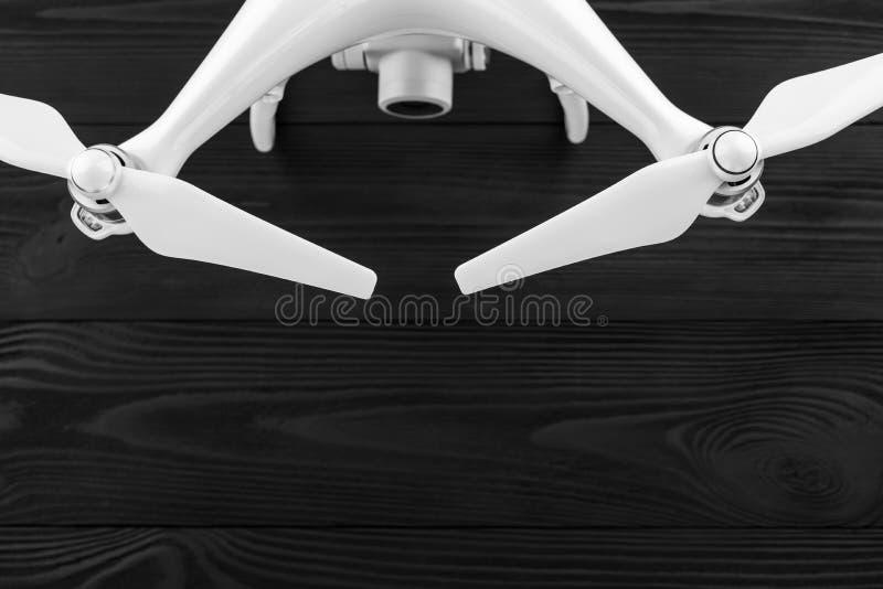 Κηφήνας σε ένα μαύρο ξύλινο υπόβαθρο στοκ φωτογραφίες με δικαίωμα ελεύθερης χρήσης