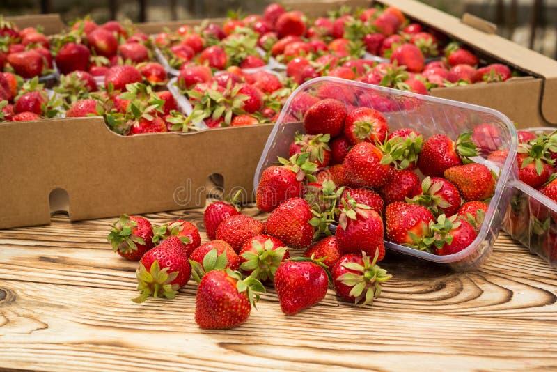 Κιβώτια των φραουλών στην αγορά αγροτών Σύνολο κλουβιών fragaria στοκ εικόνα με δικαίωμα ελεύθερης χρήσης