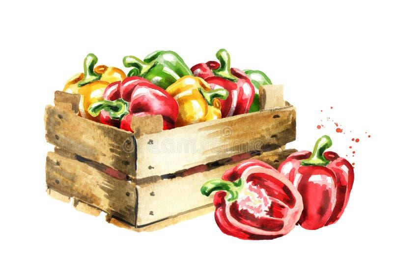 Κιβώτιο με τα πιπέρια κουδουνιών Συρμένη χέρι απεικόνιση Watercolor, που απομονώνεται στο άσπρο υπόβαθρο στοκ φωτογραφία με δικαίωμα ελεύθερης χρήσης