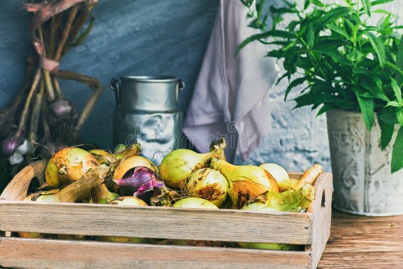 Κιβώτιο του κρεμμυδιού στον αγροτικό πίνακα στοκ εικόνες