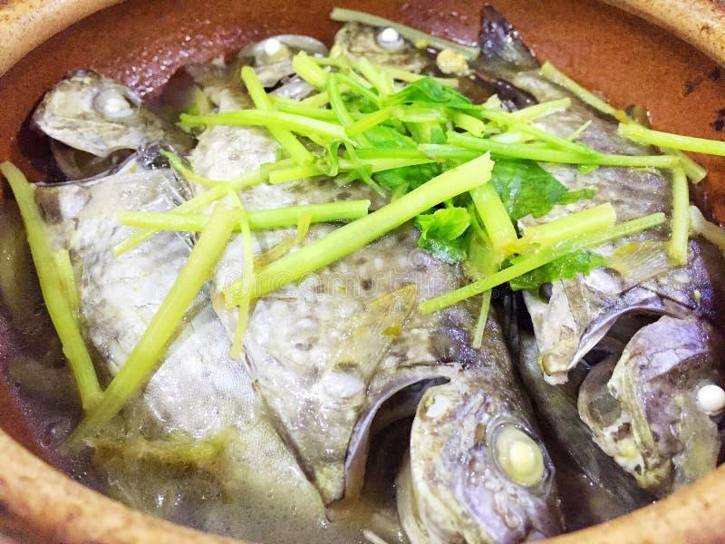 Κινεζικά βρασμένα στον ατμό ψάρια στοκ εικόνα με δικαίωμα ελεύθερης χρήσης