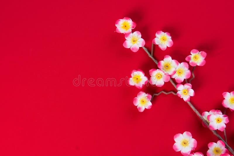 Κινεζικά νέα λουλούδια ανθών κερασιών έτους με το copyspace για το desig στοκ εικόνες