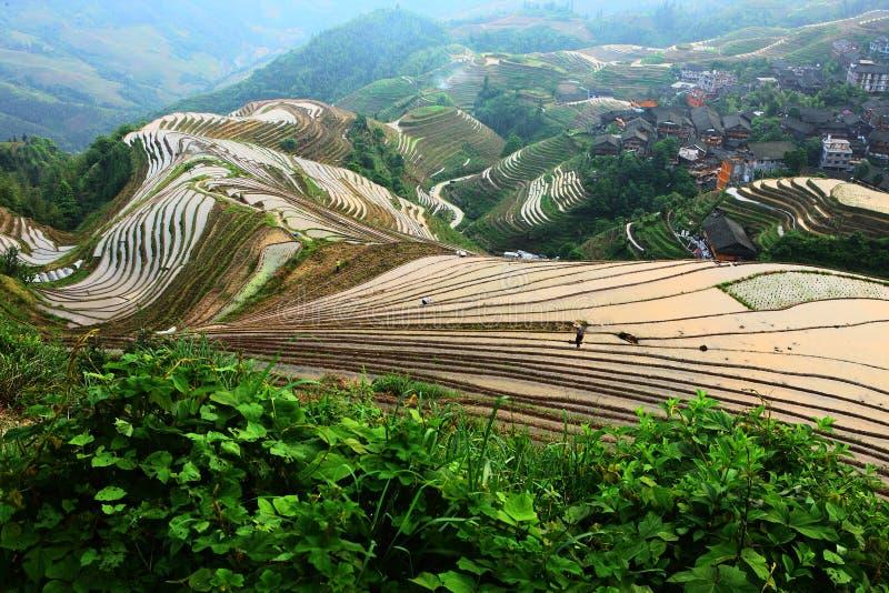 Κινεζικά πεζούλι και χωριό στοκ φωτογραφίες με δικαίωμα ελεύθερης χρήσης