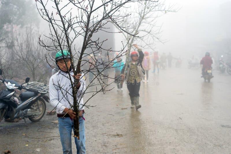 Κινεζικές νέες διακοσμήσεις έτους στο Βιετνάμ στοκ φωτογραφία