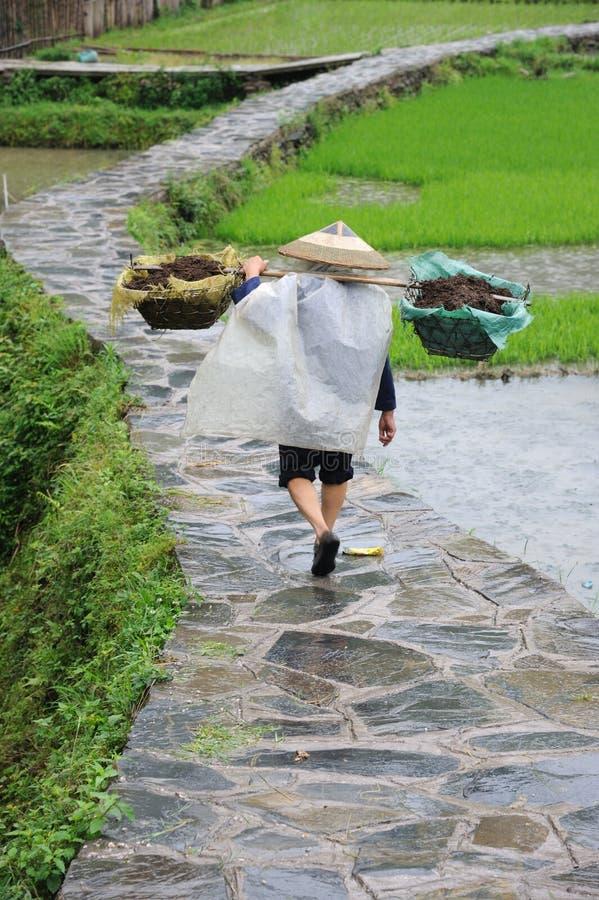 κινεζική βροχή υπηκοότητας miao αγροτών στοκ εικόνες