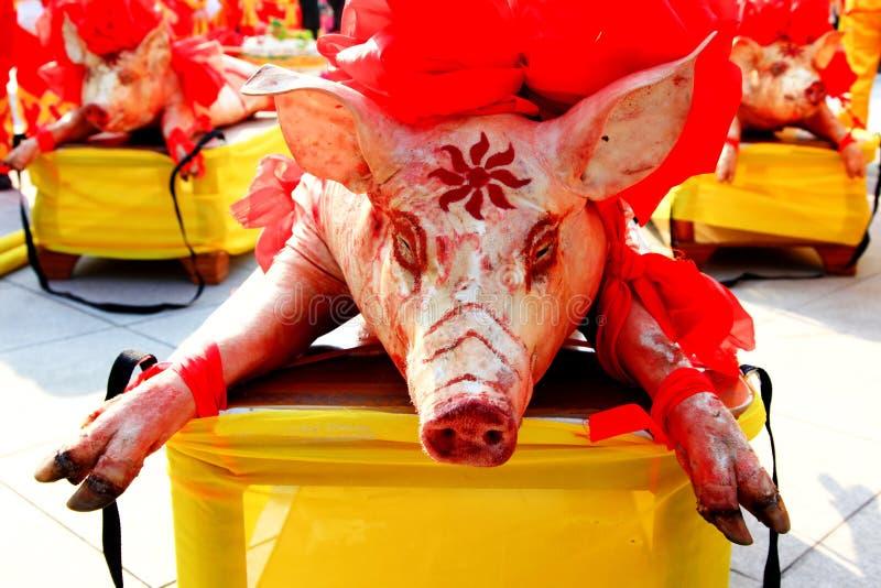 κινεζική θυσία χοίρων φε&sigm στοκ φωτογραφίες