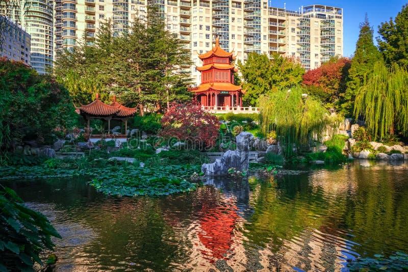 Κινεζικός κήπος της φιλίας, Σίδνεϊ, Αυστραλία στοκ φωτογραφία με δικαίωμα ελεύθερης χρήσης