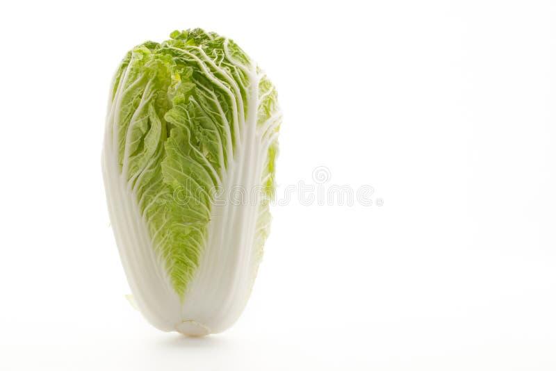 Κινεζικό λάχανο σε ένα άσπρο υπόβαθρο στοκ εικόνα με δικαίωμα ελεύθερης χρήσης
