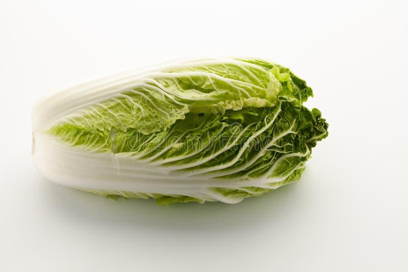 Κινεζικό λάχανο σε ένα άσπρο υπόβαθρο στοκ φωτογραφία