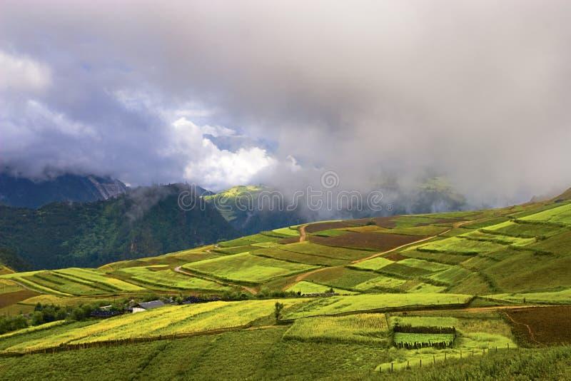 κινεζικό αγροτικό τοπίο στοκ φωτογραφία με δικαίωμα ελεύθερης χρήσης