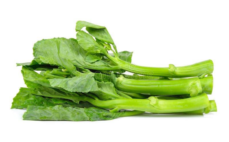 Κινεζικό κατσαρό λάχανο που απομονώνεται στο άσπρο υπόβαθρο στοκ φωτογραφία με δικαίωμα ελεύθερης χρήσης