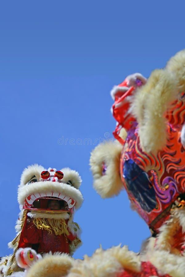 κινεζικό λιοντάρι χορού στοκ εικόνα