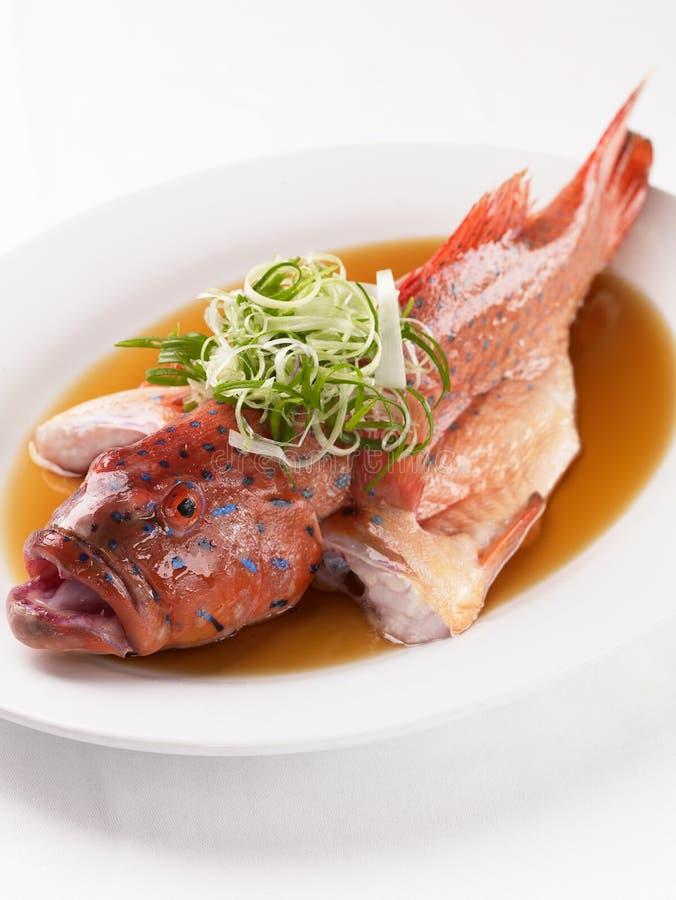 κινεζικό ύφος ατμού ψαριών στοκ εικόνα με δικαίωμα ελεύθερης χρήσης