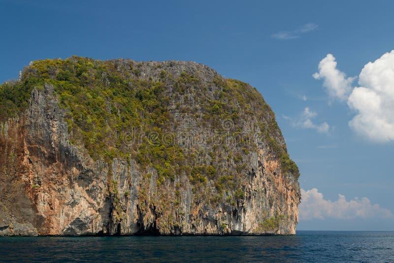 κινημένη θάλασσα φυτών σύνθεσης απότομων βράχων πρώτο πλάνο κάποιος κάθετος αέρας στοκ εικόνες με δικαίωμα ελεύθερης χρήσης