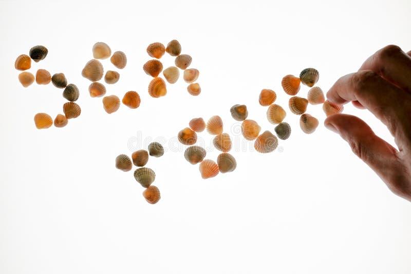 Κινηματογράφηση σε πρώτο πλάνο ενός αρσενικού χεριού που αποτελεί το γύρο θάλασσας λέξης των θαλασσινών κοχυλιών σε ένα άσπρο υπό στοκ εικόνες με δικαίωμα ελεύθερης χρήσης