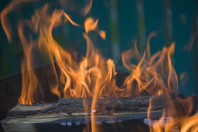 Κινηματογράφηση σε πρώτο πλάνο της πυρκαγιάς και των φλογών σε ένα θολωμένο φυσικό υπόβαθρο στοκ φωτογραφία