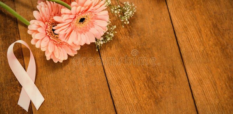 Κινηματογράφηση σε πρώτο πλάνο της ρόδινης κορδέλλας συνειδητοποίησης καρκίνου του μαστού από τα λουλούδια gerbera στοκ φωτογραφία