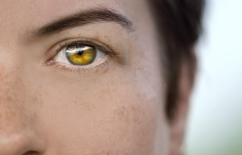 Κινηματογράφηση σε πρώτο πλάνο του ματιού ενός θηλυκού προτύπου που παρουσιάζει μικρές φακίδες στο δέρμα της στοκ εικόνα