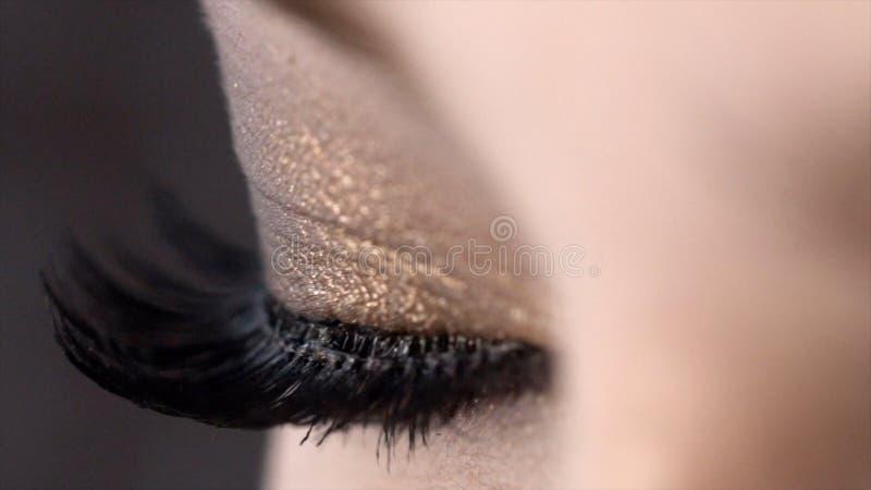 Κινηματογράφηση σε πρώτο πλάνο του όμορφου θηλυκού ματιού με τα πολύ μαύρα μαστίγια r Ακραίο μήκος των eyelashes, έξοχος μαύρος κ στοκ εικόνες με δικαίωμα ελεύθερης χρήσης