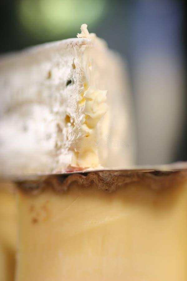 κινηματογράφηση σε πρώτο πλάνο τυριών Στοκ Φωτογραφίες