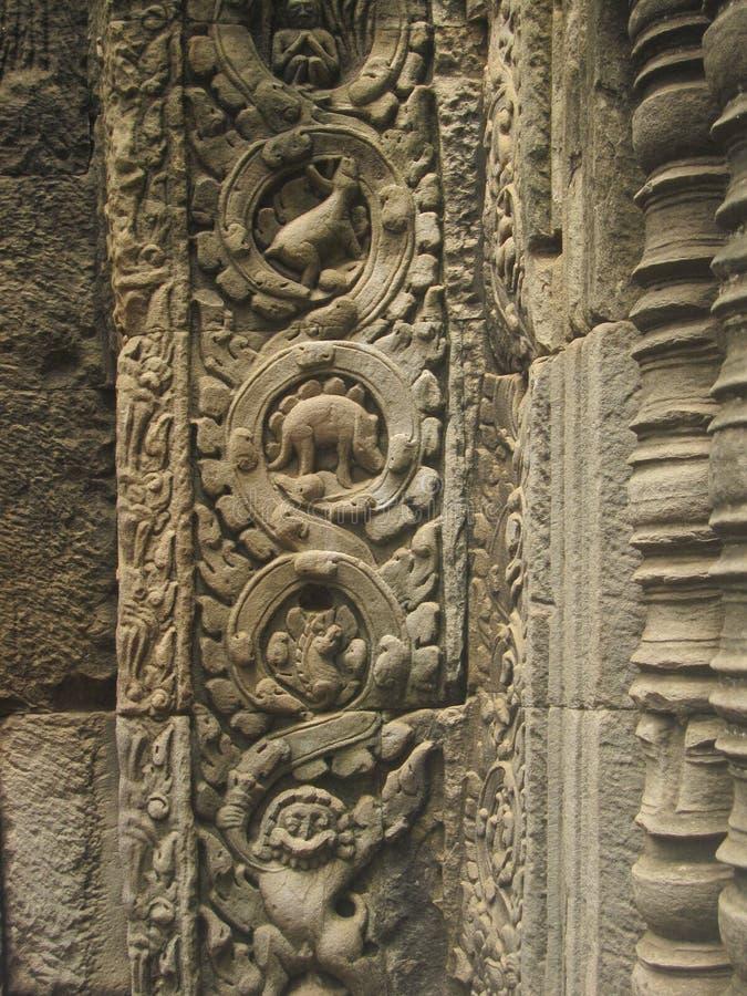 Κινηματογράφηση σε πρώτο πλάνο ενός δεινοσαύρου που ποθεί στο TA Prohm, κοντά σε Angkor Wat στοκ φωτογραφία