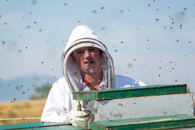 Κινηματογράφηση σε πρώτο πλάνο ενός μελισσοκόμου στοκ φωτογραφία