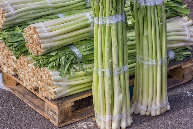 Κινηματογράφηση σε πρώτο πλάνο μιας φρέσκιας δέσμης του πράσου στην αγορά αγροτών, Allium α στοκ εικόνα με δικαίωμα ελεύθερης χρήσης