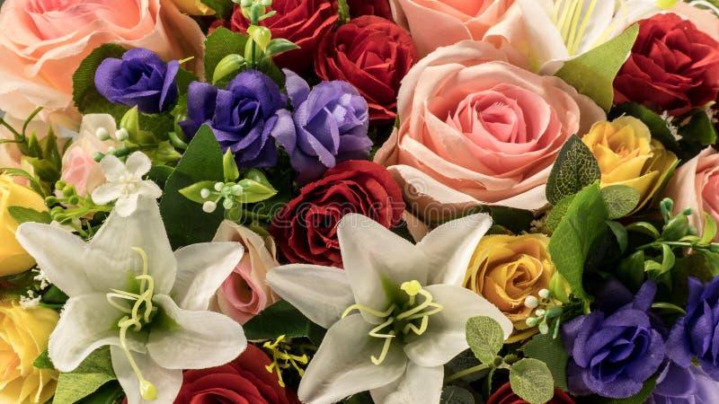 Κινηματογράφηση σε πρώτο πλάνο λουλουδιών στοκ εικόνα