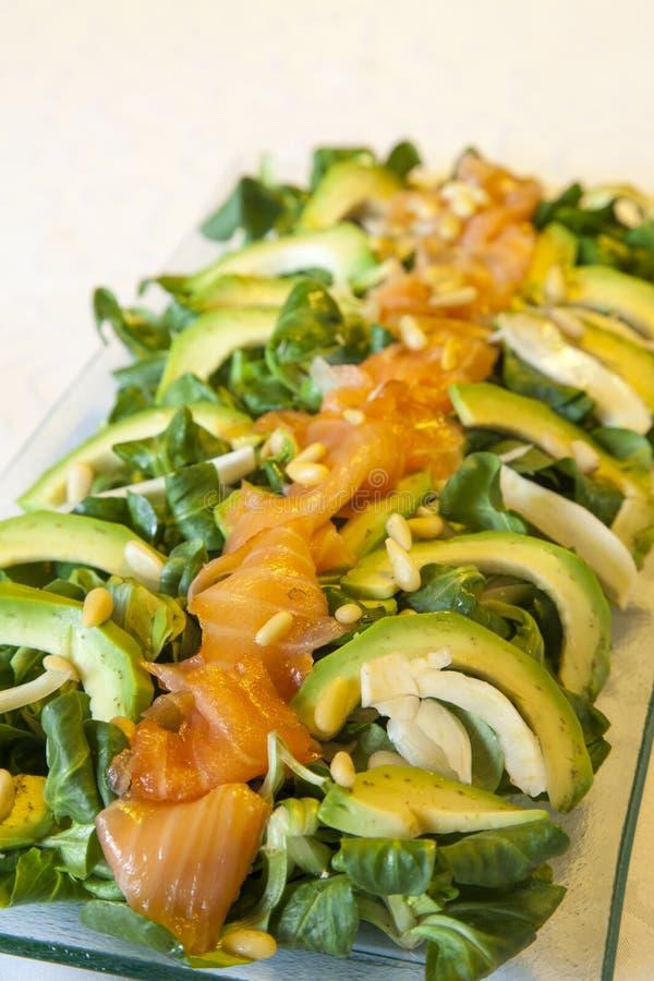 Κινηματογράφηση σε πρώτο πλάνο της υγιούς σαλάτας σολομών με το αβοκάντο και των οργανικών λαχανικών με τη σάλτσα μουστάρδας, εκλ στοκ εικόνα με δικαίωμα ελεύθερης χρήσης