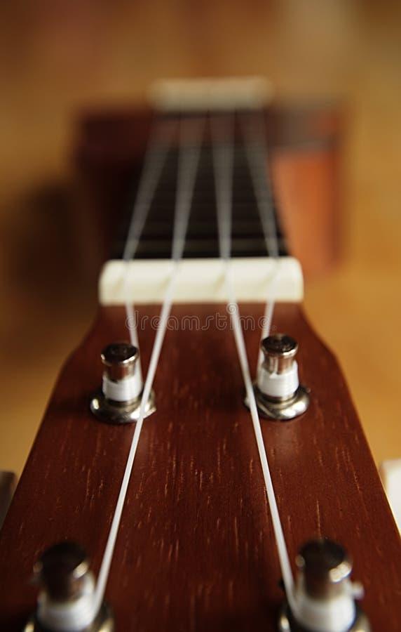 Κινηματογράφηση σε πρώτο πλάνο του κεφαλιού ukulele στοκ εικόνες με δικαίωμα ελεύθερης χρήσης