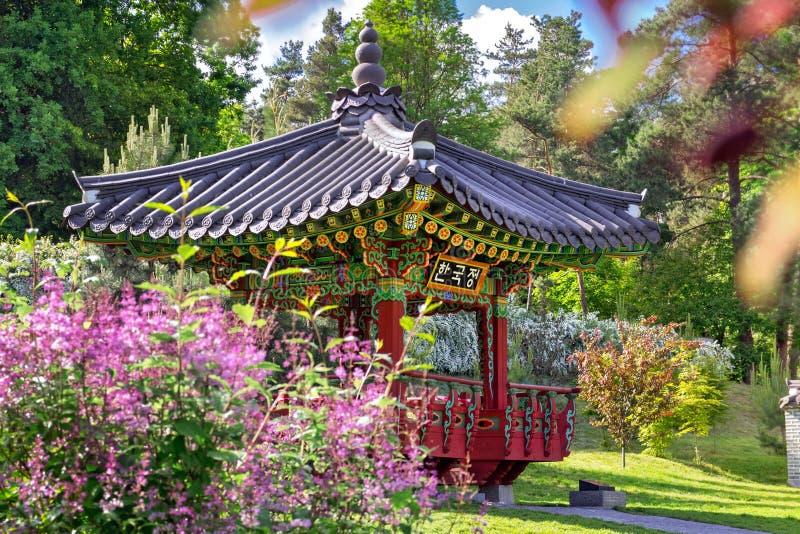 Κινηματογράφηση σε πρώτο πλάνο του κορεατικού παραδοσιακού κήπου στο Κίεβο, Ουκρανία το καλοκαίρι στοκ φωτογραφία
