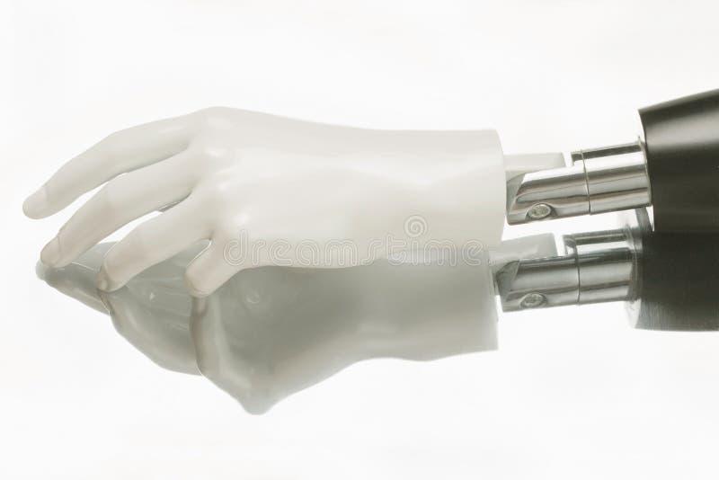 Κινηματογράφηση σε πρώτο πλάνο του χεριού ρομπότ humanoid στοκ εικόνες με δικαίωμα ελεύθερης χρήσης