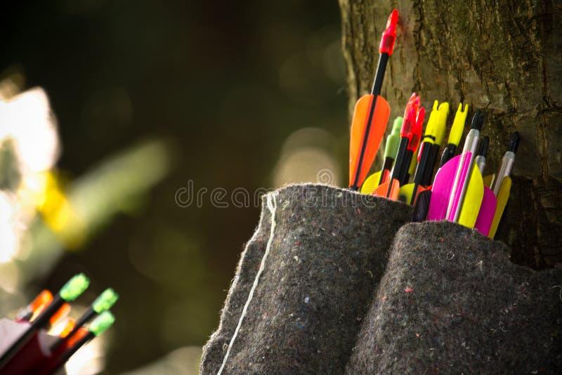 Κινηματογράφηση σε πρώτο πλάνο των ζωηρόχρωμων βελών τοξοτών που κλίνουν στο δέντρο στοκ εικόνα με δικαίωμα ελεύθερης χρήσης