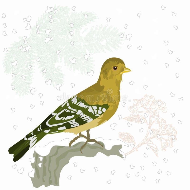 Κινητήριο διάνυσμα Χριστουγέννων πουλιών και χιονιού διανυσματική απεικόνιση