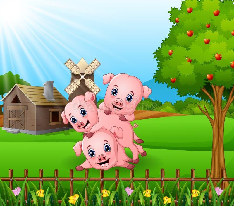 Κινούμενα σχέδια τρία μικροί χοίροι που παίζουν στο αγροτικό υπόβαθρο διανυσματική απεικόνιση