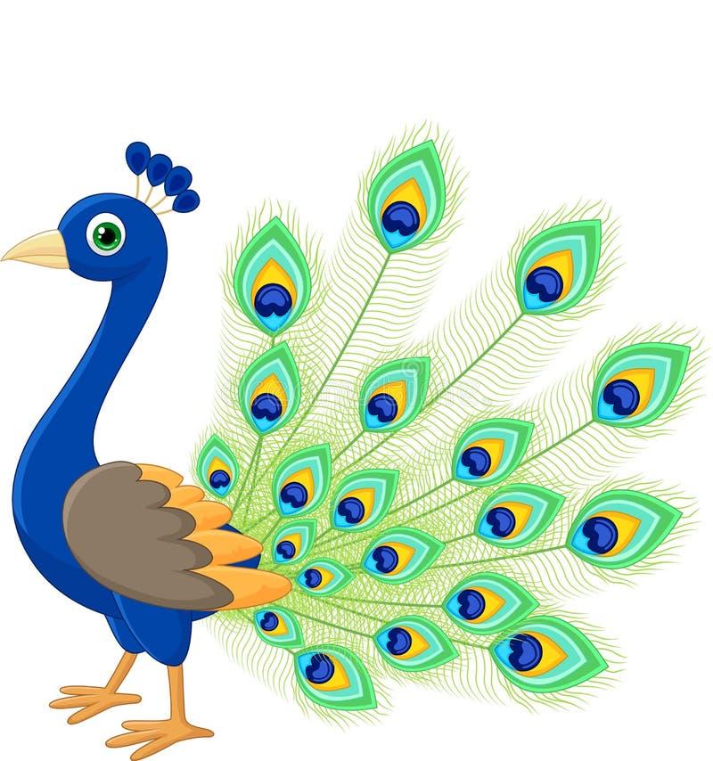 Κινούμενα σχέδια Peacock ελεύθερη απεικόνιση δικαιώματος