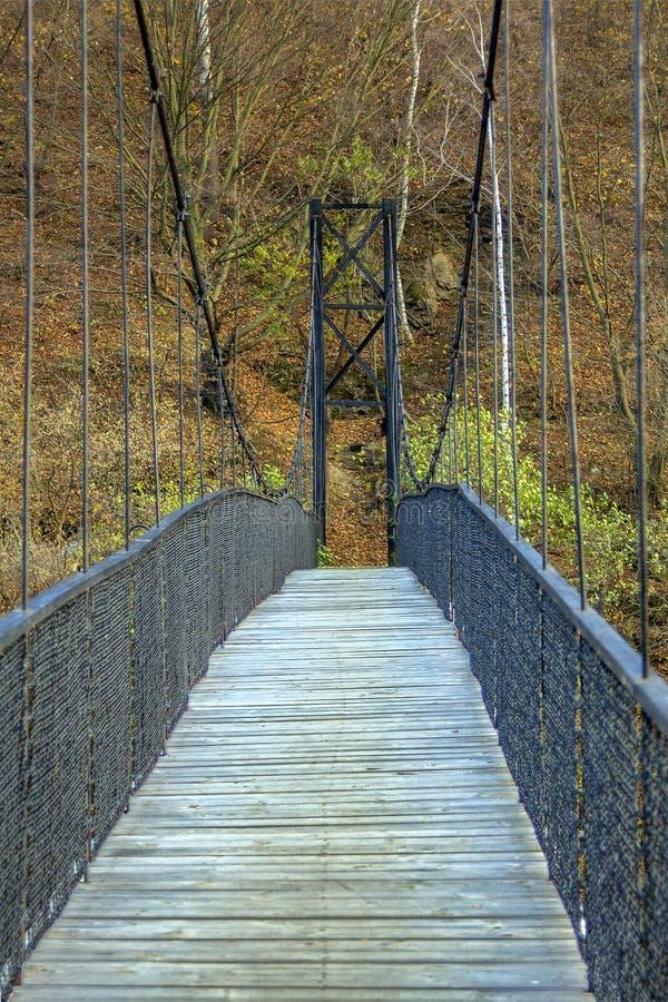 Κινούμενη γέφυρα πέρα από τη λίμνη προς το δάσος, τοπίο φθινοπώρου στοκ εικόνα με δικαίωμα ελεύθερης χρήσης