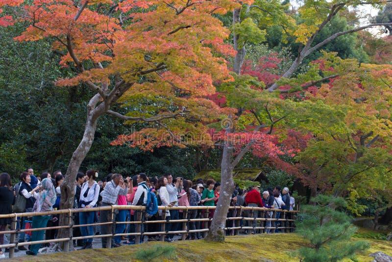 ΚΙΟΤΟ, ΙΑΠΩΝΙΑΣ - 8.2015 ΝΟΕΜΒΡΙΟΥ τουρίστας που λαλιέται στο ναό Kinkaku-kinkaku-ji που εξετάζει και που συλλαμβάνει το χρυσό Pa στοκ φωτογραφία με δικαίωμα ελεύθερης χρήσης