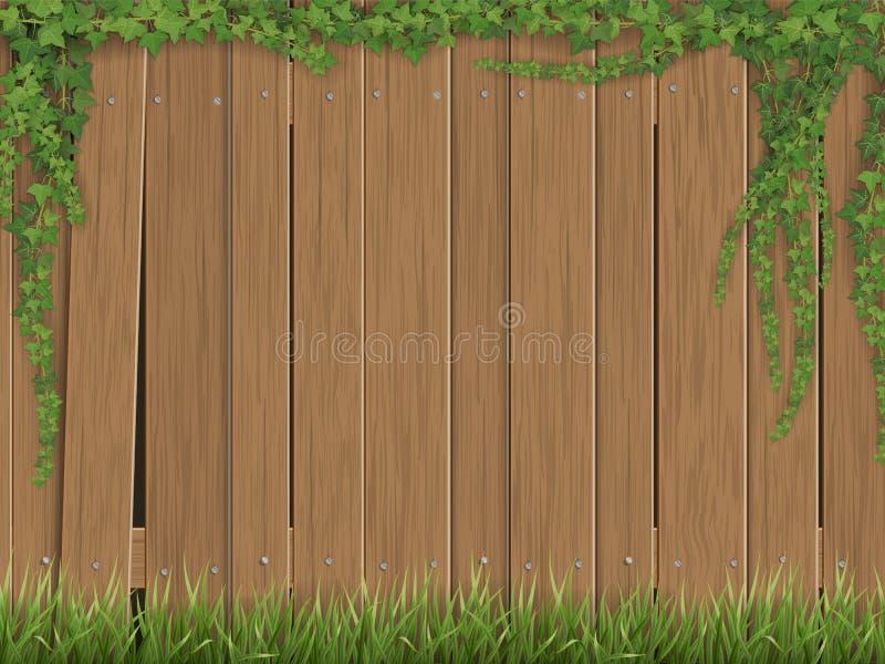 Κισσός και χλόη στο παλαιό ξύλινο υπόβαθρο φρακτών ελεύθερη απεικόνιση δικαιώματος