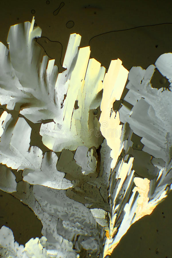 Κιτρικό οξύ στοκ φωτογραφία