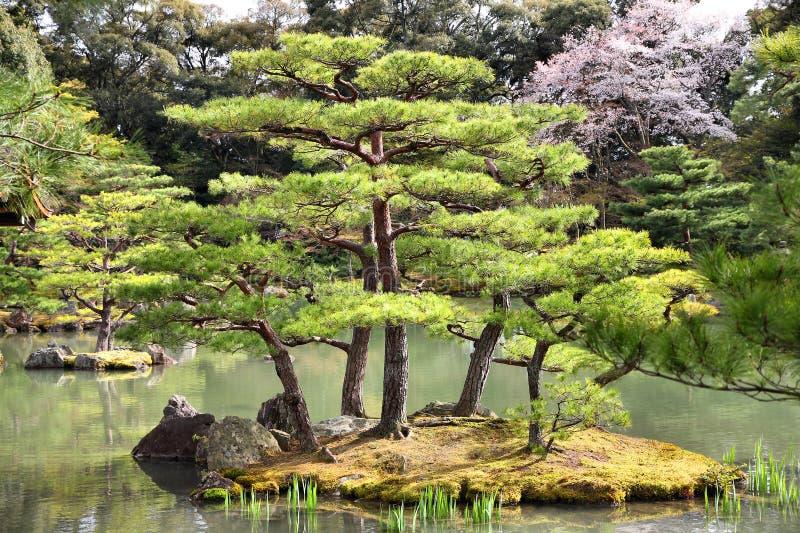 Κιότο, Ιαπωνία στοκ φωτογραφία με δικαίωμα ελεύθερης χρήσης