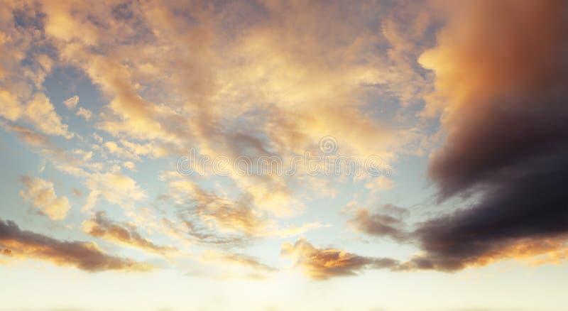 κλάδοι πράσινοι κανένας riverbank καλοκαίρι ουρανού στοκ φωτογραφία με δικαίωμα ελεύθερης χρήσης