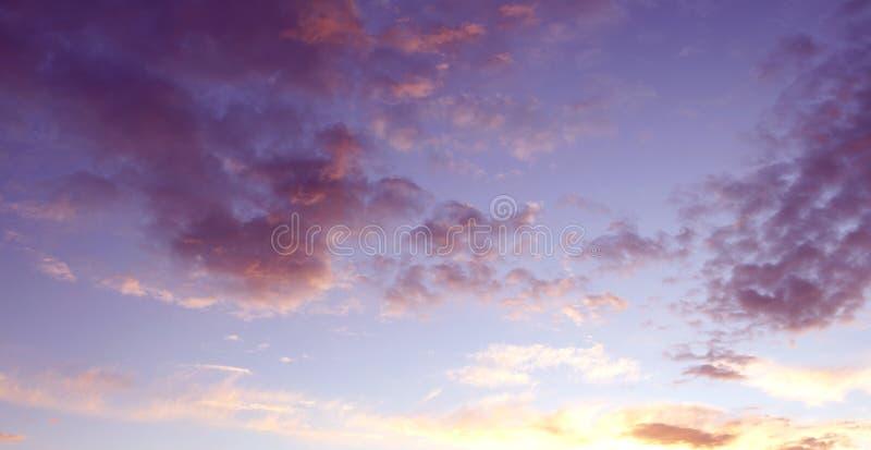 κλάδοι πράσινοι κανένας riverbank καλοκαίρι ουρανού στοκ εικόνες με δικαίωμα ελεύθερης χρήσης