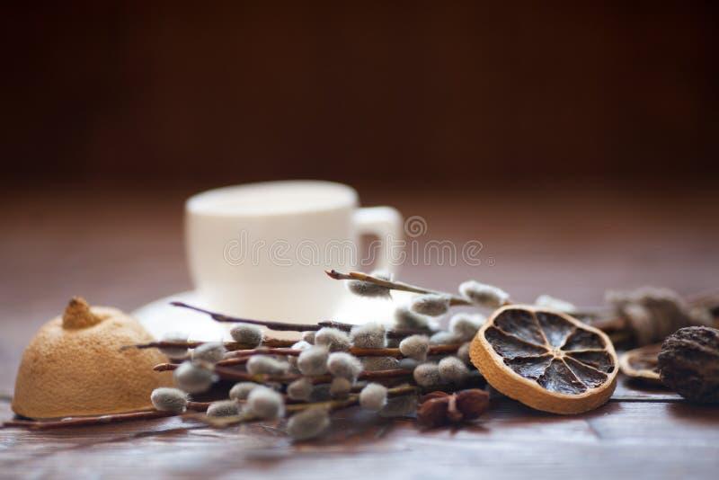 Κλάδοι φλυτζανιών και ιτιών καφέ, ξηρό λεμόνι, κανέλα στοκ εικόνα με δικαίωμα ελεύθερης χρήσης